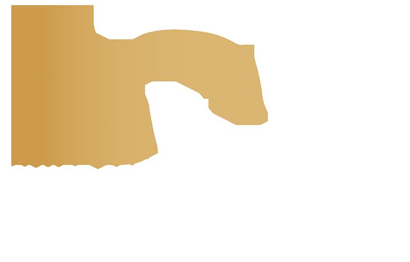 logo-white 800