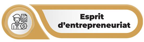 valeur d'entreprise esprit d'entrepreneuriat au Maroc